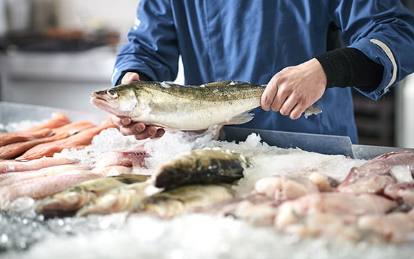 Fishmonger - BHRV Refrigerated Vehicle Specialist